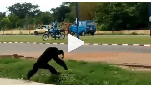 Ape Escapes from UNILORIN Zoo confinement