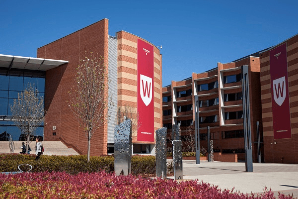 2020 Vice-Chancellor's Academic Excellence Financial Aid At WSU - Australia