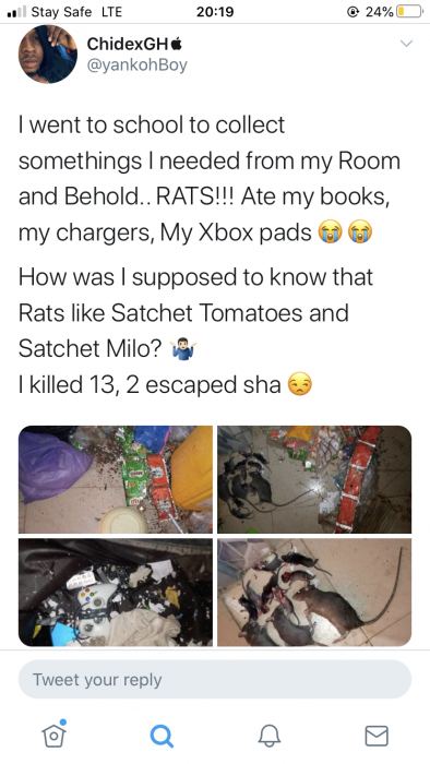 Rats Leave ABSU Student in Awe