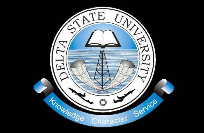 DELSU Postgraduate Admission Form for 2019/2020 Academic Session (Updated)