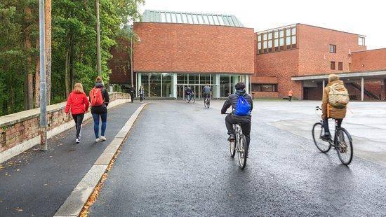 2021 Field-Based Scholarships for International Students at University of Jyväskylä, Finland