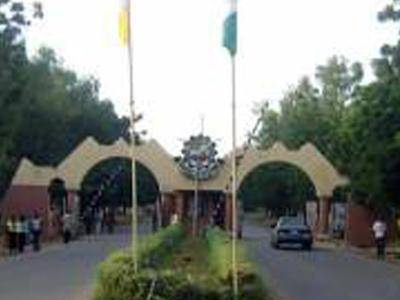 Modibbo Adama University Reportedly Sacks Two Lecturers For Sexual Harassment