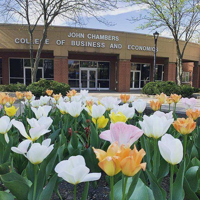 Dean's Scholarship At John Chambers College of Business & Economics - USA 2020