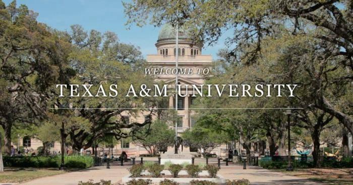 2021 International Education Fee Scholarships at Texas A&M University, USA